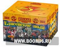 Батарея салюта Елисейские поля - Магазин фейерверков и салютов BOOM96.RU с бесплатной круглосуточной доставкой в Екатеринбурге!