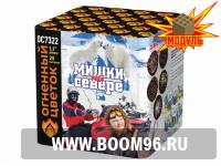 Батарея салюта Мишки на Севере (25 залпов) - Магазин фейерверков и салютов BOOM96.RU с бесплатной круглосуточной доставкой в Екатеринбурге!