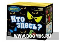 Батарея салюта Кто здесь? (48 залпов) - Магазин фейерверков и салютов BOOM96.RU с бесплатной круглосуточной доставкой в Екатеринбурге!